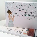 My little box Janvier 2016 : My Little Wish Box