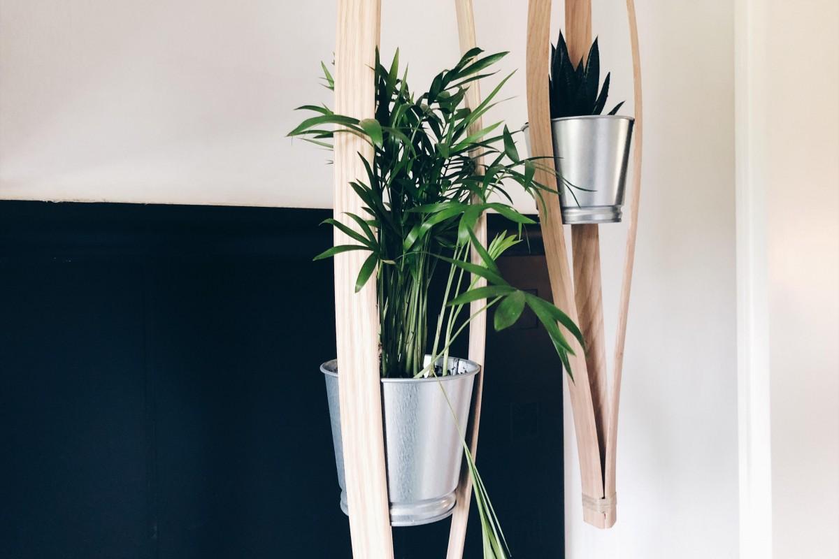 suspension-plante-bois